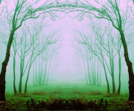 Fog Monday